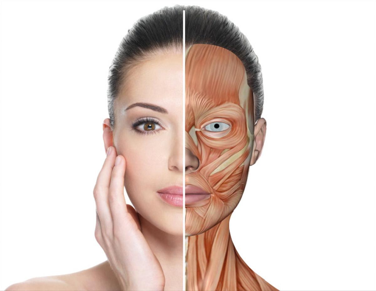 Muskelaufbautraining für Ihr Gesicht